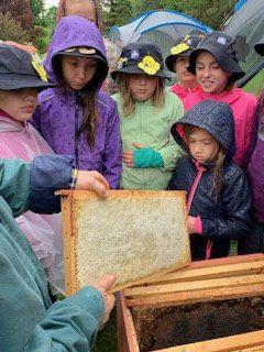 Camp June 2019 Bee Workshop 3